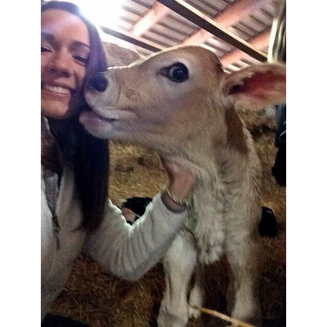 MSU Food + Nutrition Club Tours Dairy Farm | Milk Means More Blog