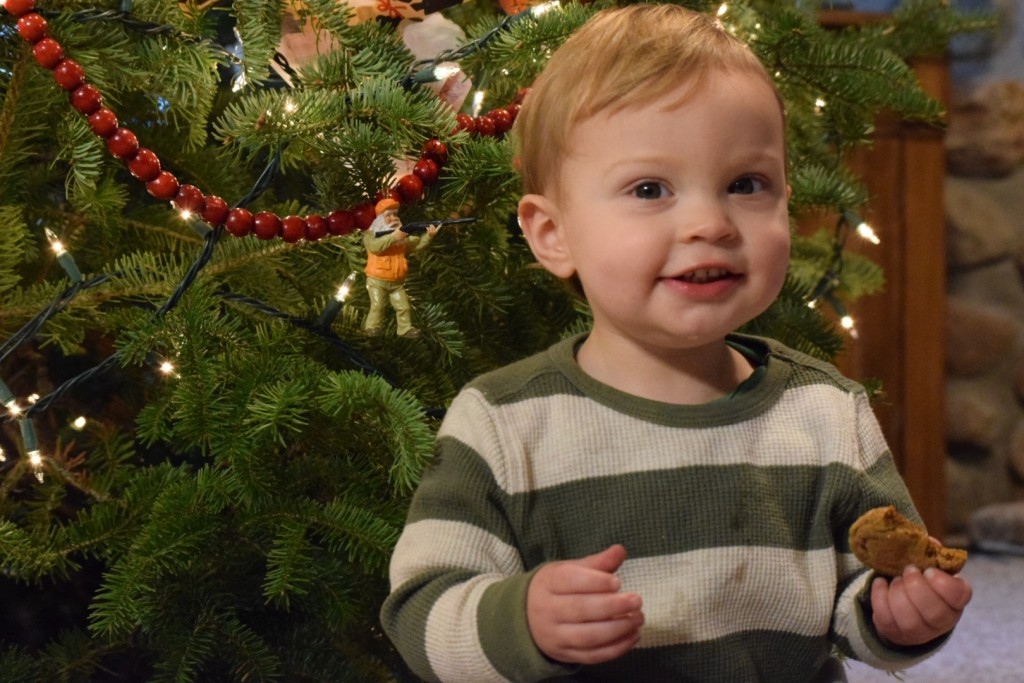 My grandson Nathan enjoying a cookie by the Christmas tree