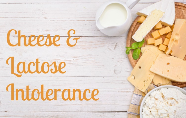 Cheese and Lactose Intolerance | Milk Means More blog