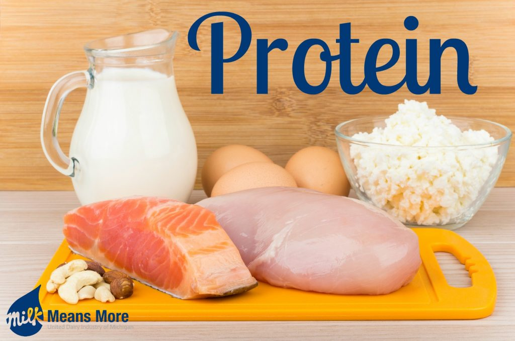 5 Reasons Why Protein is the Latest Buzzword