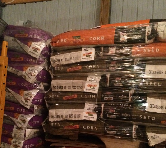 Corn seed stacked in the barn