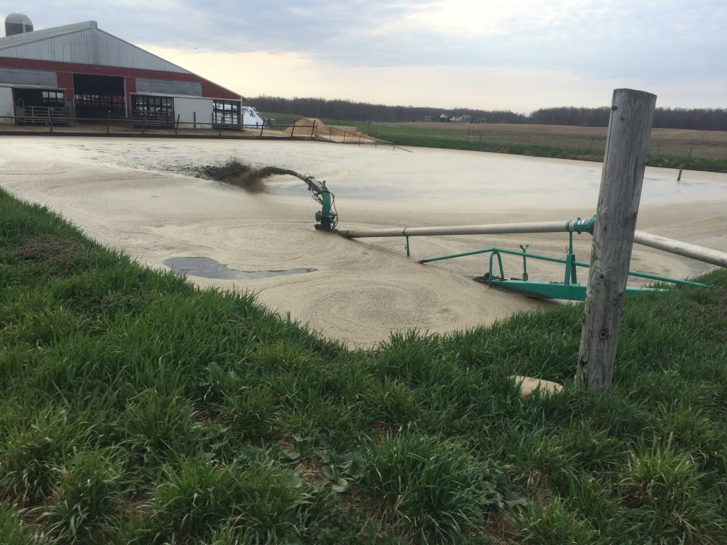Agitating the manure lagoon