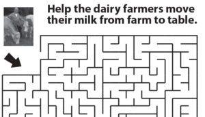 dairy-maze_column