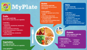 myplate-adult_column