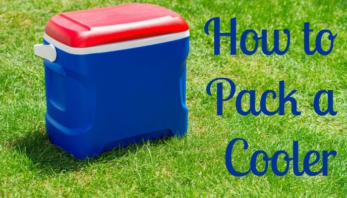 Picnic cooler box in Australian flag colors on grass