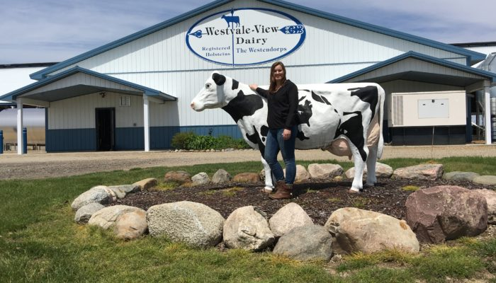 What I learned interning at United Dairy Industry of Michigan