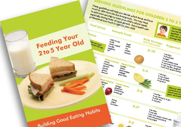 Feeding Your 2 to 5 Year Old booklet
